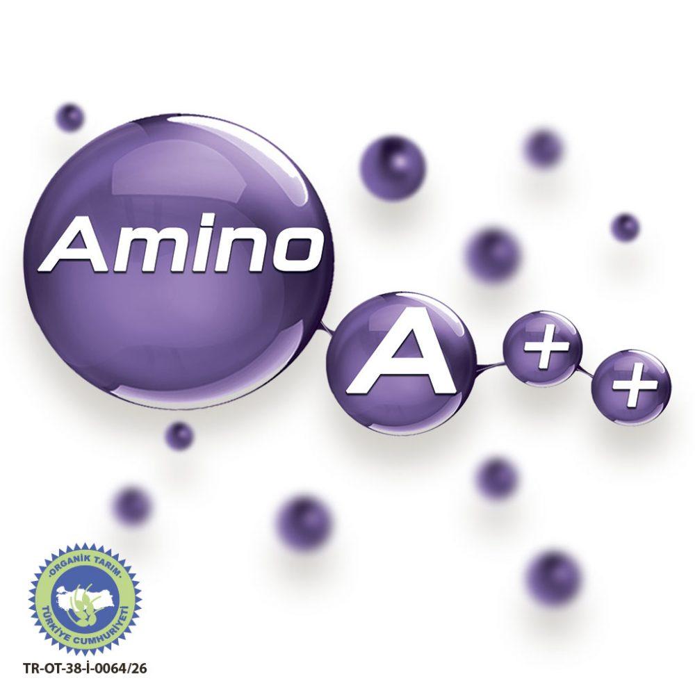 amino2